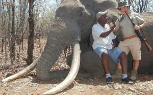 nkombo-elephant_3473812k