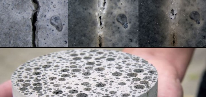 bioconcrete