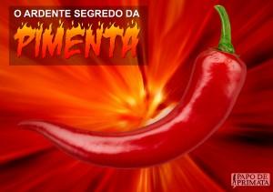 pimenta2